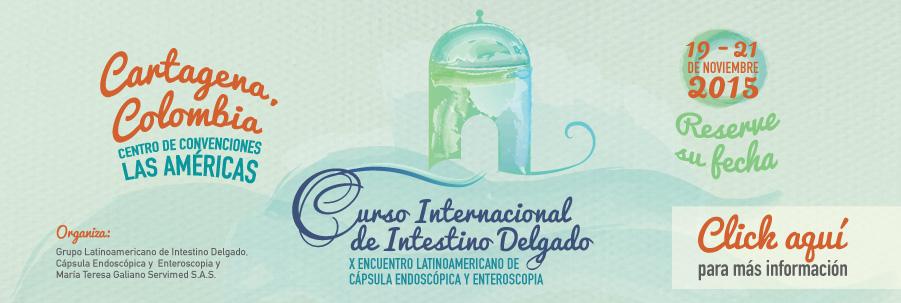 Curso Internacional de Intestino Delgado